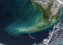 satellite map of florida nasa visible earth the florida