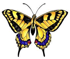 butterfly design butterfly border clip butterflies on pentas