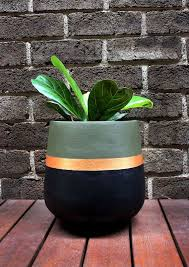 best 25 painted plant pots ideas on pinterest painted flower