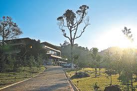 Seeking Song An Organic Farm Stay In Bukit Tinggi Mail
