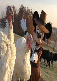 disney world thanksgiving best images collections hd for gadget