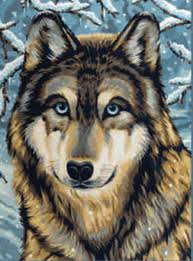amazon com reeves medium painting by numbers wolf 2 arts