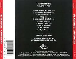 a pagan place the waterboys songs reviews credits allmusic