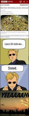 Kidney Stones Meme - funny kidney meme kidney best of the funny meme