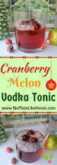 vodka thanksgiving cocktails best 25 vodka tonic ideas only on pinterest water but pretty
