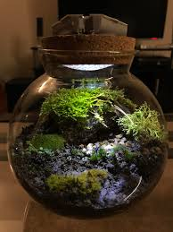 dyi baterry led light on a closed terrarium terrariums