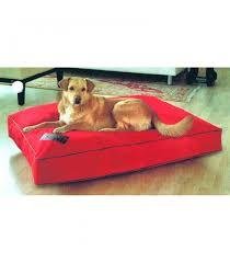Petsmart Dog Bed Kong Dog Bed Don T Miss This Deal Kong Square Cuddler Pet Bed