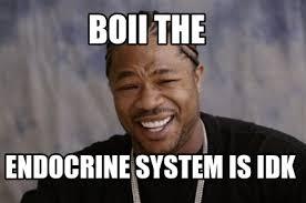 Idk Meme - meme creator boii the endocrine system is idk meme generator at