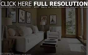 cool things for apartment interior design living room ideas