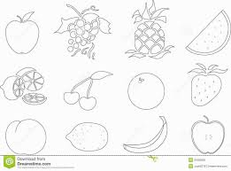 fruit salad coloring sheets coloring pages coloring pages