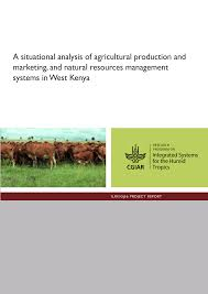 a situational analysis of agricultural production and marketing