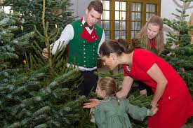 princess estelle accepts christmas trees at palace