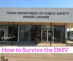 how to survive the dmv in plano