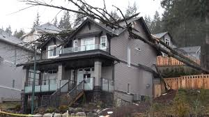 coquitlam water erosion responsible for tree falling onto house