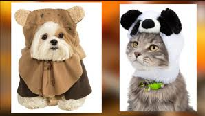 Dog Minion Halloween Costumes 33 Pets Halloween Costumes Flaunt Unique Halloween Style