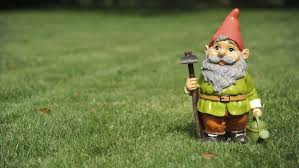 bring my gnomes back leduc grandmother pleads for return of
