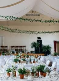 Potted Plants Wedding Centerpieces by This Portnahaven Hall Wedding Went Totally Natural By Decorating
