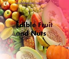 edible fruits how to export edible fruit and nuts peel of citrus fruit or melons