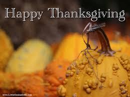 happy thanksgiving ecards funny free animated thanksgiving desktop wallpaper wallpapersafari