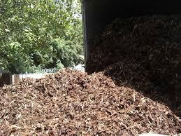 landscape bark chippings landscape bark types and colors