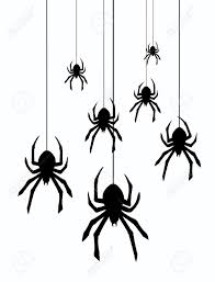 spider hanging from web animated
