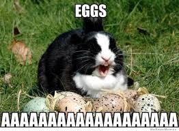 Egg Meme - 20 happy easter egg hunting memes sayingimages com