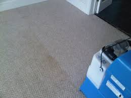 Rug Doctor Mighty Pro X3 Carpet Cleaning Results Using The Rug Doctor Mighty Pro Widetrack