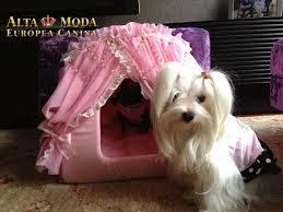 sofa fã r hunde best 25 sofas para perros ideas on sofás para perros