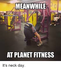 Fitness Meme - meanwhile themgainz official at planet fitness it s neck day