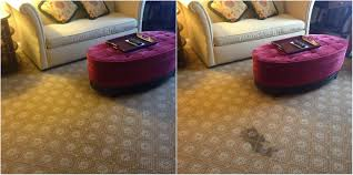 Steam Cleaning U0026 Floor Care Services Fort Collins Co Full Spectrum Carpet Dyeing Transform Your Home Without The Cost