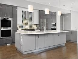 Painting Inside Kitchen Cabinets by Kitchen Grey Painted Kitchen Cabinets Can You Paint Laminate