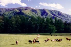 Tennessee landscapes images Cades cove tn photo landscapes of america photos jpg