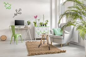 room with plants white room with plants stock photo photographee eu 128101242
