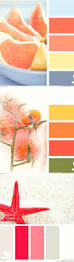 paint color palettes u2013 alternatux com