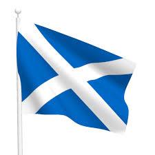 polyester scotland cross flag flags international