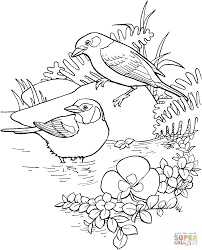 golden eared tanager coloring page free printable coloring pages