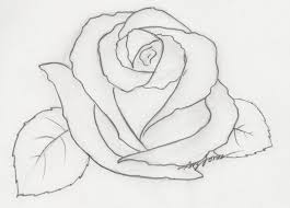 pencil sketch of rose drawing flowers how to draw a rose with