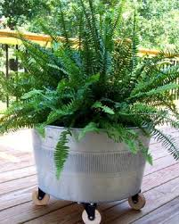 Advantage Of Raised Garden Beds - 18 unimaginable galvanized tub uses in the garden balcony garden web