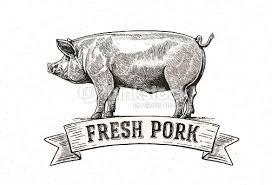graphic pig vector art thinkstock