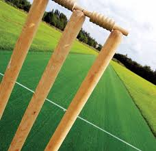 lytchett minster cricket pitches with practice nets artificial