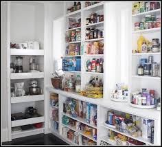 Modern Kitchen Pantry Designs - pantry design ideas interior design