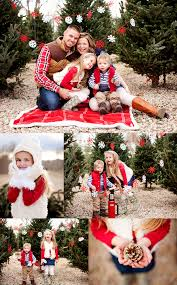 a very merry session garlands backyard and christmas pictures