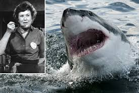 julia child cooked shark repellent for troops during wwii new