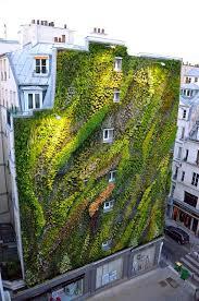 vertical gardens 8 easy ways to create a vertical garden wall inside your home