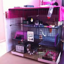How To Build A Rabbit Hutch And Run Best 25 Indoor Rabbit Cage Ideas On Pinterest Indoor Rabbit