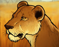 draw lioness head step step safari animals animals