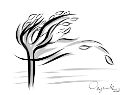 Color Of The Wind Illustrator For A Book U2013 Tam My Spring Literature Part 1 U2013 Kimz