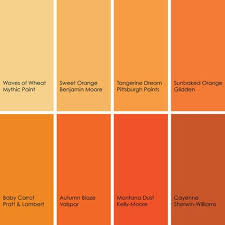 Yellow Brown Best 20 Light Orange Ideas On Pinterest Orange Light Shades
