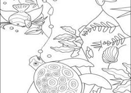 rainbow fish coloring pages coloring4free