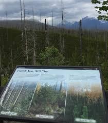 Wildfire Restaurant Banff Menu by May 2016 U2013 Rebecca Radnor U0027s Blog Consider Yourself Warned
